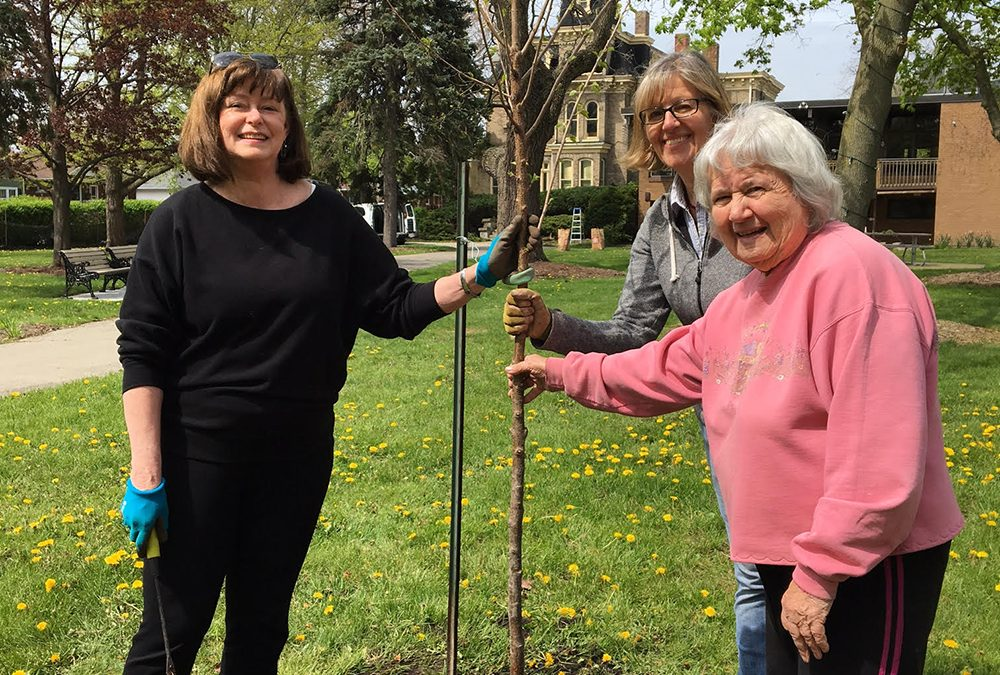Roselawn Gardens are Springing to Life